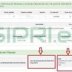 Pantalla de la consulta individualizada del listado de admitidos y asignación de tribunal en las oposiciones docentes de Andalucía 2021